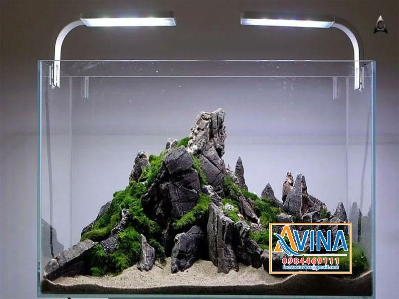 Mẫu bể cá thủy sinh layout đá